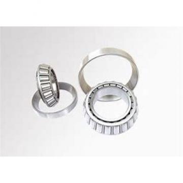 3.74 Inch | 95 Millimeter x 6.693 Inch | 170 Millimeter x 1.26 Inch | 32 Millimeter  NACHI NU219MY C3  Cylindrical Roller Bearings
